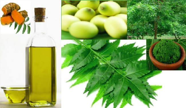 नीम / neem benefits & remedies in hindi