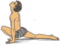 Surya Namaskar Step-5