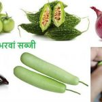 भरवां सब्जी 6 bharwa sabji Stuffed Vegetable recipes