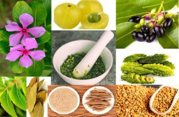 Diabetes sugar ka ayurvedic ghrelu desi upchar / मधुमेह का घरेलू उपचार - शुगर का घरेलू इलाज इन हिंदी – शुगर का आयुर्वेदिक इलाज शुगर की बीमारी का इलाज - - - डायबिटीज का घरेलू उपचार
