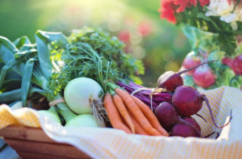 Vegetables fruits good for the heart patient हृदय रोग में भोजन : कौन-कौन से फल और सब्जियां खाएं