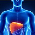 हेपेटाइटिस बी के उपचार हेपेटाइटिस बी ठीक होता है की नहीं हेपेटाइटिस बी से बचाव हेपेटाइटिस बी का टीका क्या हेपेटाइटिस बी का इलाज संभव है hepatitis b karan lakshan bachav ilaj