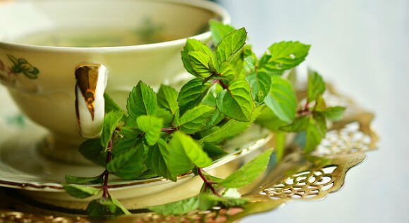5 homemade herbal drink recipes hindi जानिए 5 हर्बल ड्रिंक रेसेपी – ताजगी और स्फूर्ति के लिए