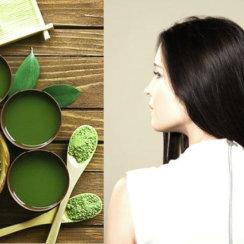 Balo ki dekhbhal ke herbal tips बालों की देखभाल के घरेलू हर्बल नुस्खे – रूखे, तैलीय और सामान्य बाल