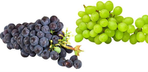अंगूर की जानकारी अंगूर का जूस angoor ke baare mein jankari grape angur khane ke fayde jankari labh
