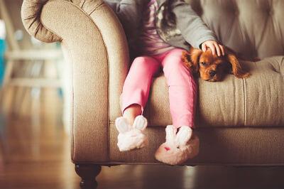 पालतू जानवरों और पक्षियों से आपको लग सकती है कई बीमारियाँ paltu janvaro se ho sakti hai bimari ki