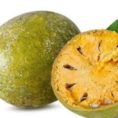 बेल के फायदे तथा बेलपत्र के बेहतरीन औषधीय गुण bel churna patte ras ped ke fayde
