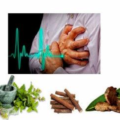 एंजाइना का घरेलू आयुर्वेदिक उपचार – ह्रदय रोग से मुक्ति dil ki bimari heart attack ka ayurvedic ilaj