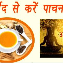 आयुर्वेद के अनुसार पाचन क्रिया ठीक करने तथा पाचन शक्ति बढ़ाने के उपाय pachan kirya shakti badhane ki ayurvedic dawa