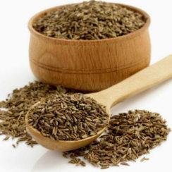 जीरा के औषधीय गुण, फायदे तथा जीरे की तासीर जीरा के फायदे गुण तासीर cumin seeds